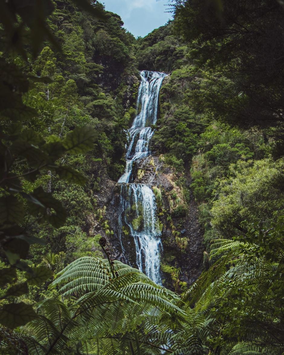 Piha, New Zealand by @wildandfree.corina