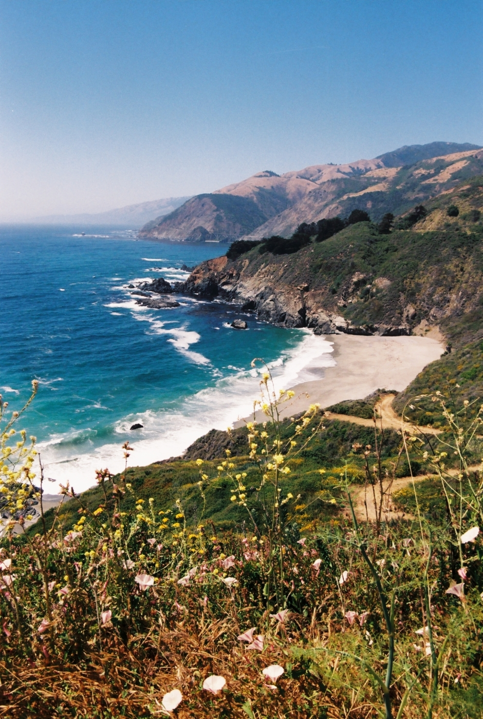Big Sur on Film by @wildandfree.corina